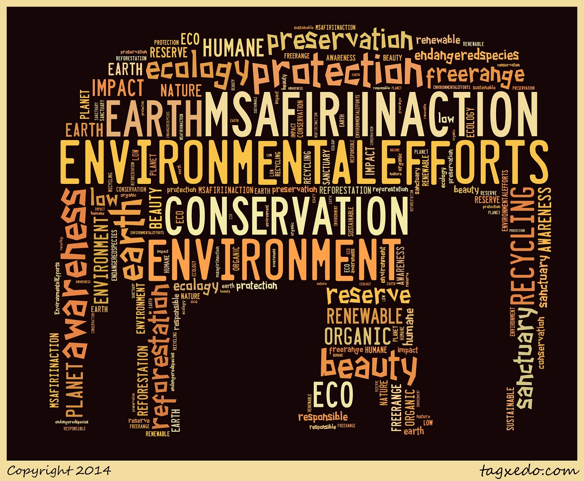 Enviro wordle_ellie2